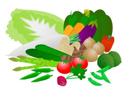 野菜のルーツ